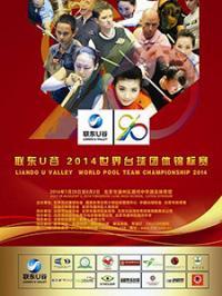 Командный чемпионат мира по пулу